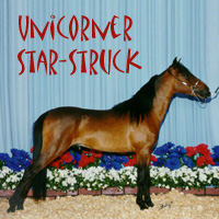 Unicorner Rowdy Star-Struck